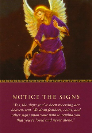signs of angels free reading